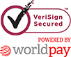 128bit SSL secure server