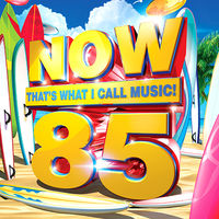 Various Artists: Now That's What I Call Music! 85