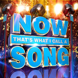 Various Artists: NOW That's What I Call A Song