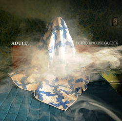 ADULT.: Detroit House Guests