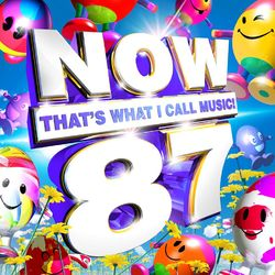 Various Artists: Now That's What I Call Music! 87