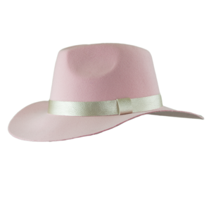 Lady Gaga: Joanne Wide Brimmed Hat