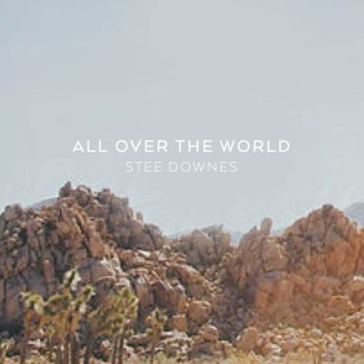 Stee Downes: The Bigger Picture