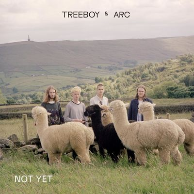 Treeboy & Arc: Not Yet / Marge