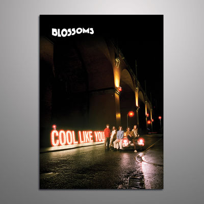 Blossoms: Cool Like You A3 Print (Signed)