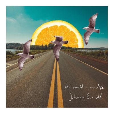 Johnny Borrell: My World, Your Life