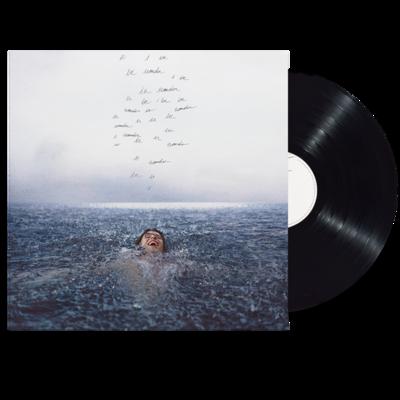 Shawn Mendes: Wonder Standard LP