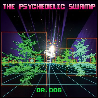 Dr. Dog: The Psychedelic Swamp
