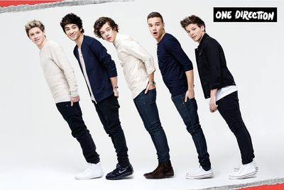 One Direction: One Direction Line Poster