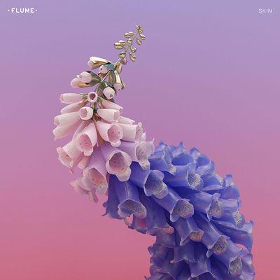 Flume: Skin