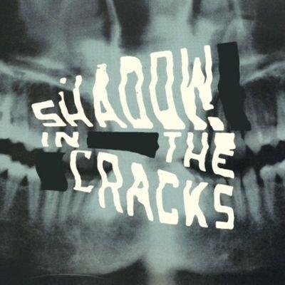 Shadow in the Cracks: Shadow in the Cracks