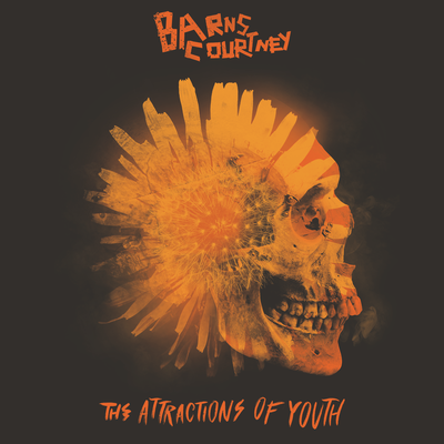 Barns Courtney: The Attractions Of Youth CD