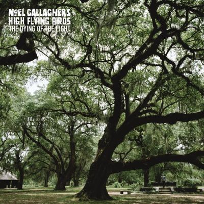 Noel Gallagher's High Flying Birds: The Dying Of The Light