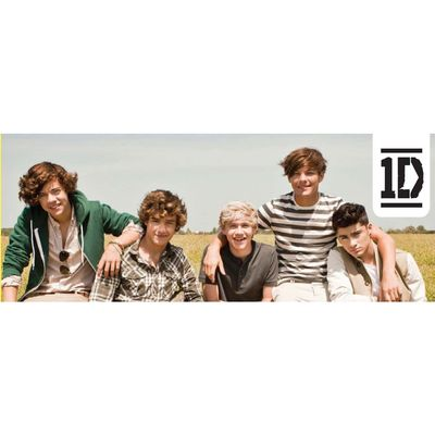 One Direction: One Direction Group Door Poster