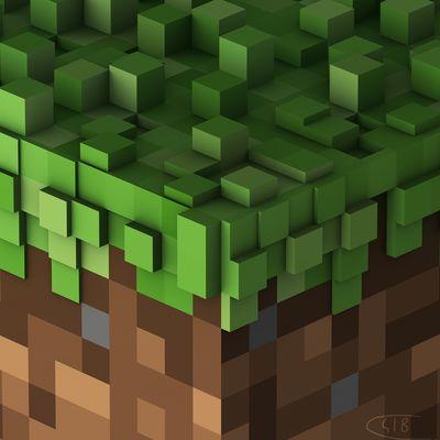 C418: Minecraft Volume Alpha Signed Print