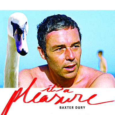Baxter Dury: It's A Pleasure