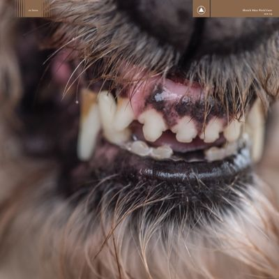 Blanck Mass: World Eater