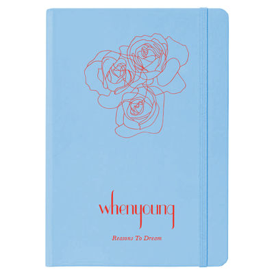 Whenyoung: Standalone Notebook