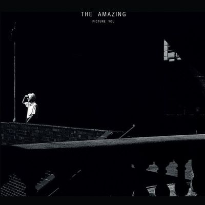 The Amazing: Picture You