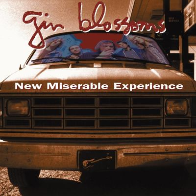The Gin Blossoms: New Miserable Experience