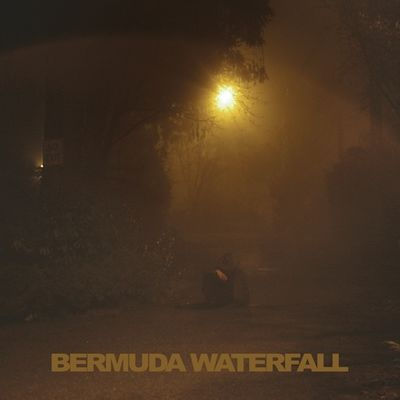 Sean Nicholas Savage: Bermuda Waterfall
