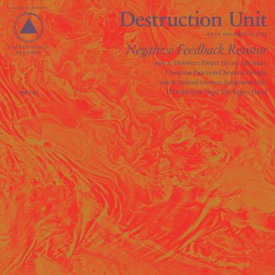 Destruction Unit: Negative Feedback Resistor + Label Sampler