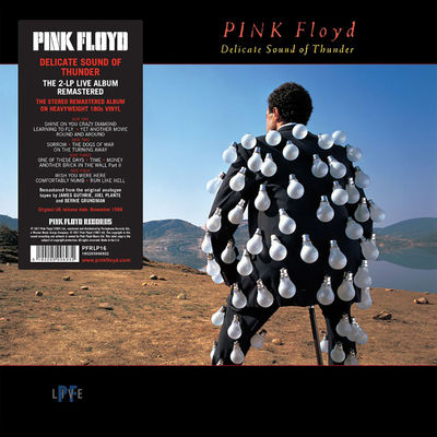 Pink Floyd: Delicate Sound Of Thunder