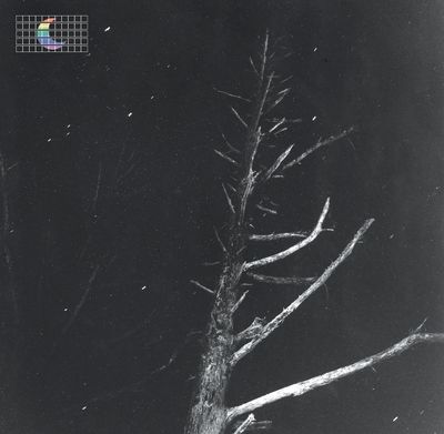 Peter Broderick: Colours Of The Night (Satellite)