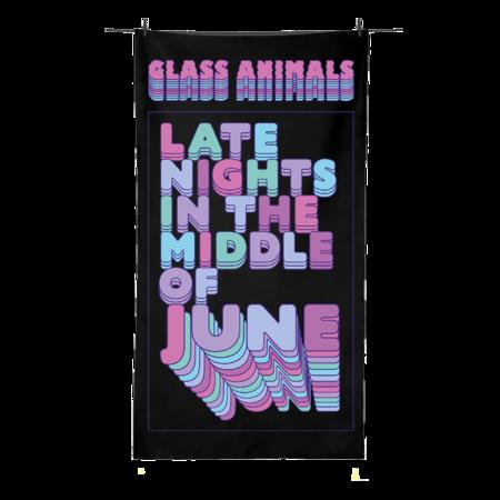 Glass Animals: HEATWAVES BEACH TOWEL