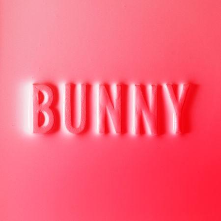 Matthew Dear: Bunny