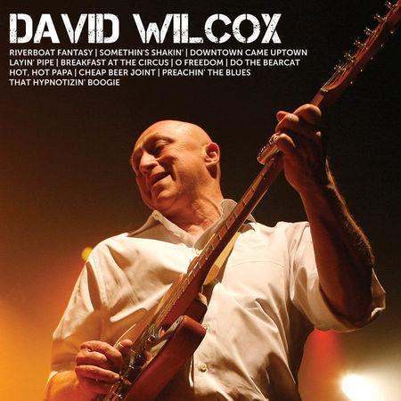 David Wilcox: Icon