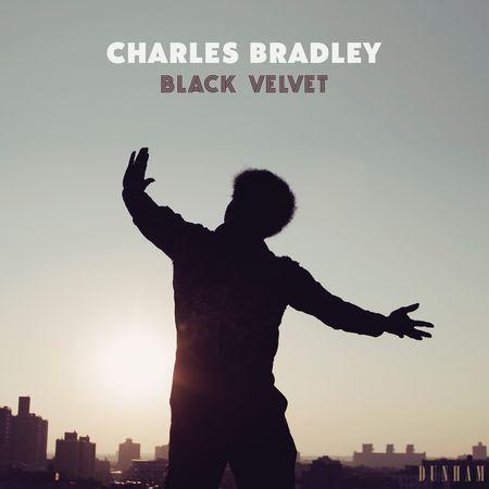 Charles Bradley: Black Velvet