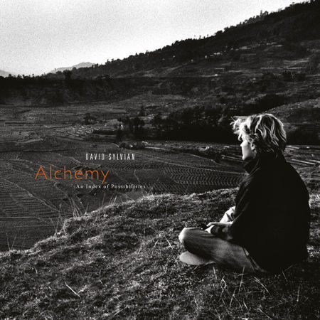 David Sylvian: Alchemy: An Index Of Possibilities (LP)