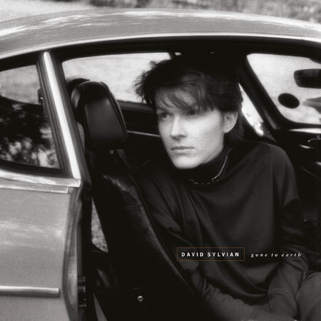 David Sylvian: Gone To Earth (2LP)