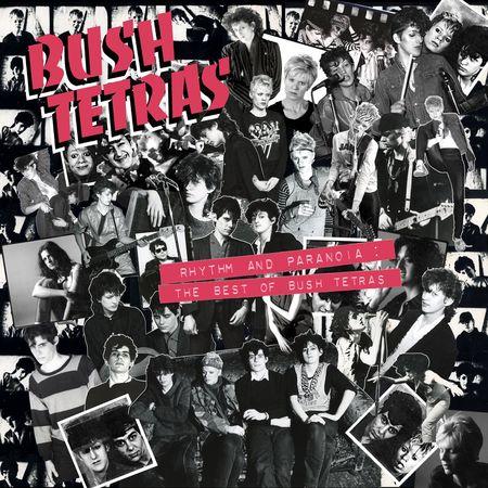 Bush Tetras: Rhythm and Paranoia - The Best of Bush Tetras : 2CD
