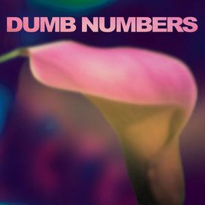 Dumb Numbers: Dumb Numbers