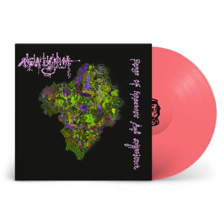 Aga Ujma: Songs of Innocence and Experience: Signed Exclusive Pink 12