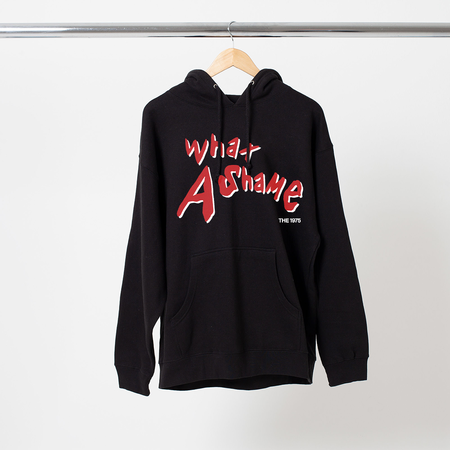 The 1975: WHAT A SHAME HOODIE