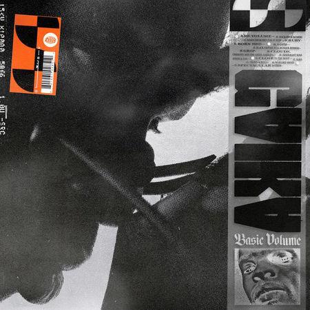 Gaika: BASIC VOLUME