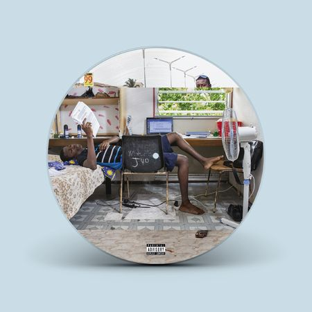 Blood Orange: Angel's Pulse: Limited Edition Picture Disc