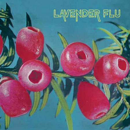 The Lavender Flu: Mow The Glass
