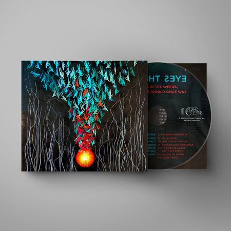 Bright Eyes: Down in the Weeds, Where the World Once Was: CD