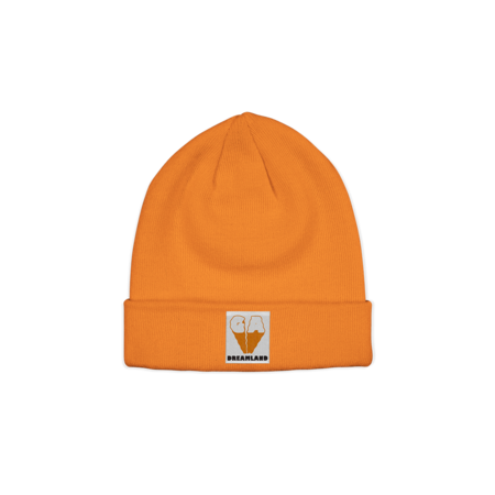 Glass Animals: Tangerine Beanie