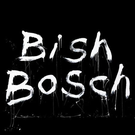 Scott Walker: Bish Bosch: CD
