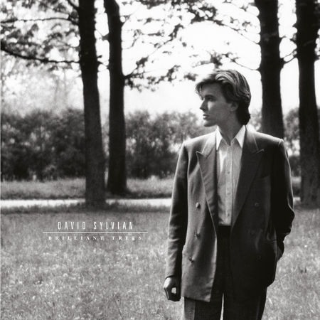 David Sylvian: Brilliant Trees (LP)