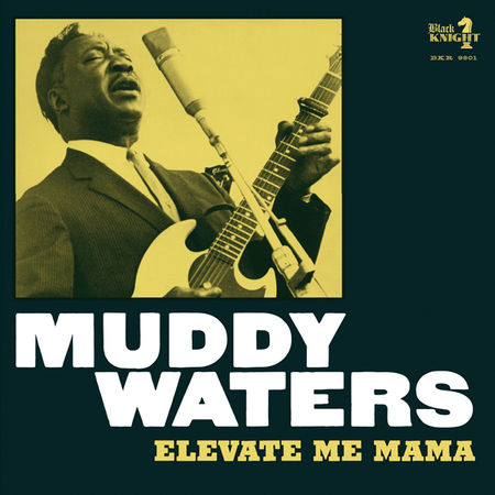 Muddy Waters: Elevate Me Mama