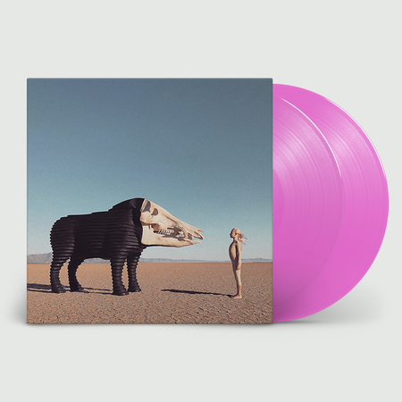 Man Man: Dream Hunting in the Valley of the In-Between: Loser Edition Double Pink Vinyl