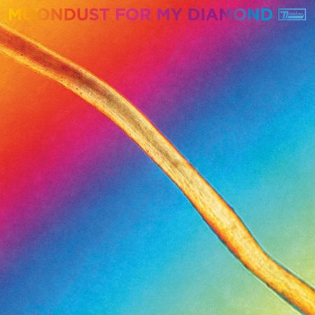 Hayden Thorpe: Moondust For My Diamond: CD