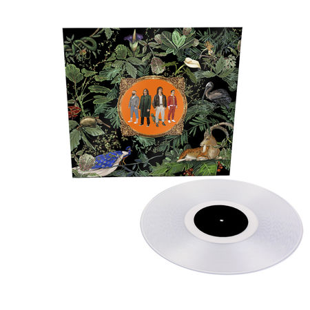 Don Broco: Amazing Things: Limited Edition Clear Vinyl LP
