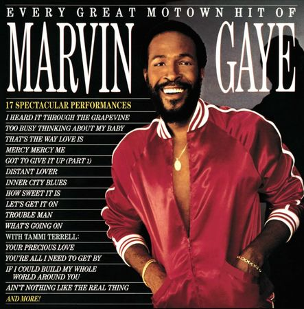 Marvin Gaye: Every Great Motown Hit (LP)